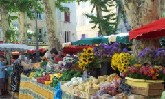 Clair De Lune : Market In Provence S