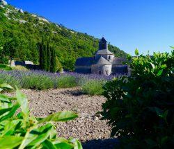 Clair De Lune : Les Pays De La Provence Verte