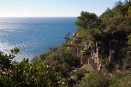 Clair De Lune : Capdecarqueirannelepradet Spots De Peche Campings De Giens